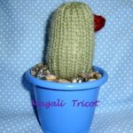 cactus_three