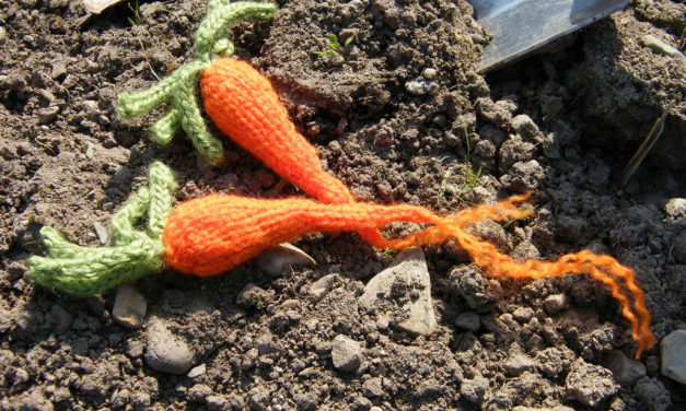 Knit a Carrot! Get the Pattern …