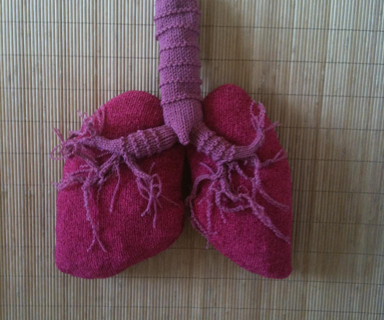 Awesome Knitted Respiratory System