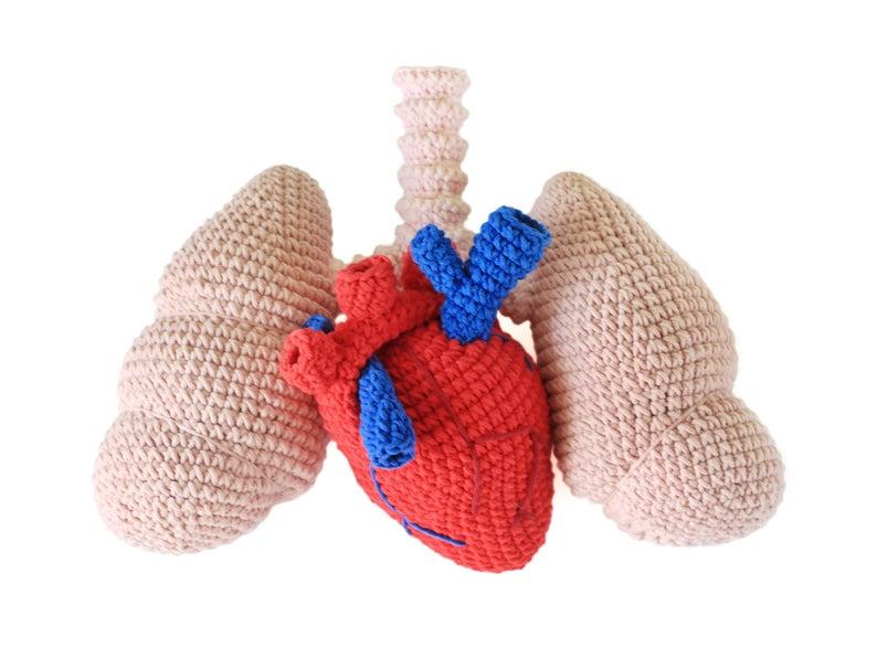 crochet lungs pattern #crochet