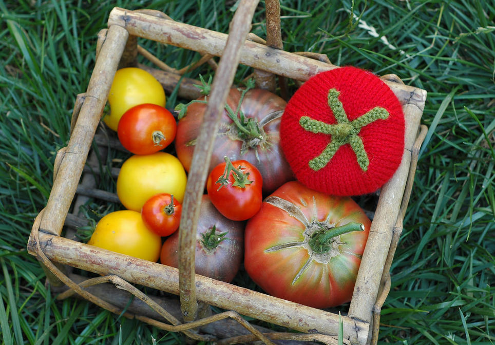 One of These Tomatoes Is Not Like The Others ... It's Knitted!