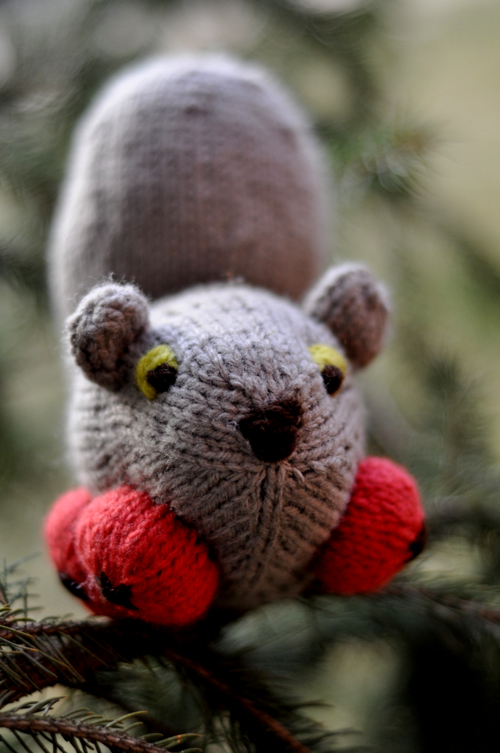 Knit a Squirrel, Add Wheels and You've Got Yourself a Nice Sqwheel!