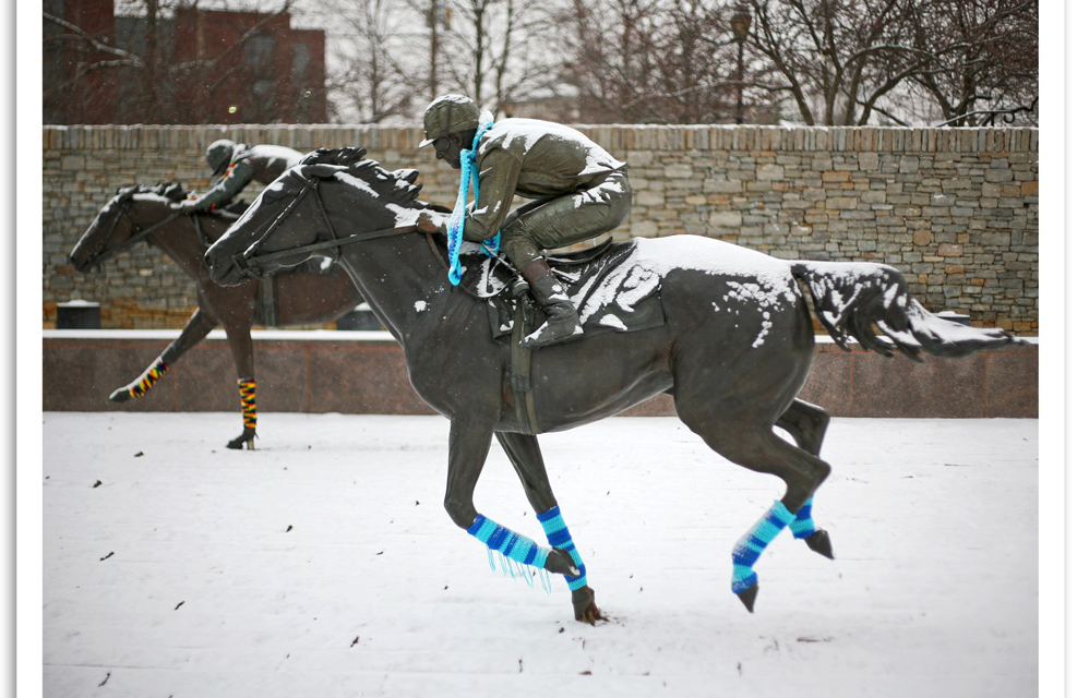 Yarn Bombed Horses at Thoroughbred Park in Lexington, KY