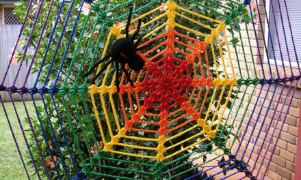 Jenny's Giant Rainbow Spider Web Yarnbomb