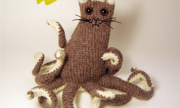 She Knit an 'Octopuss' and You Can Too!