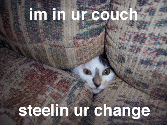 Knitted Sofa Cat Meme A Knit Lolcat Knithacker