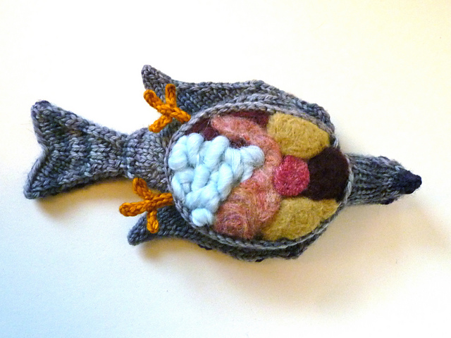 Check Out This Dissected Pigeon ... It's Knitted!