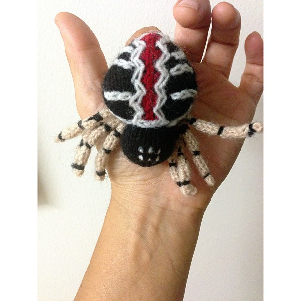 Knitted Redback Spider Puppet Spotted By Kim Tairi