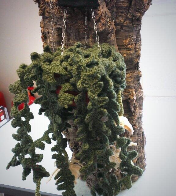 "They Crocheted a ""Fishbone Cactus"""