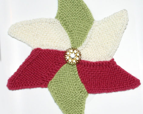 Knit a Starfish Cloth – Free Pattern, Works Up Quick!