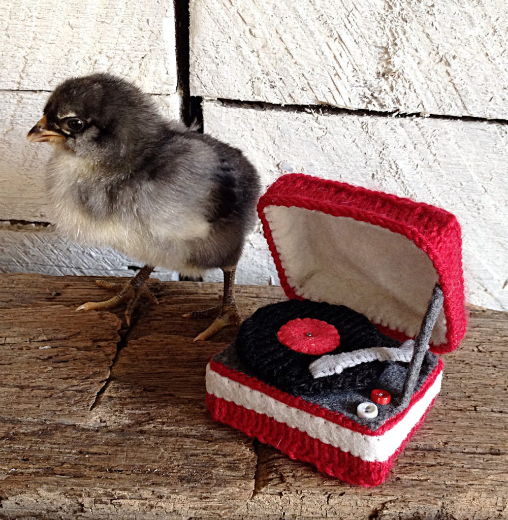 This Tiny Knitted Record Player Wins The Internet!
