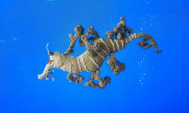 Two Seadragon Patterns For Knitters