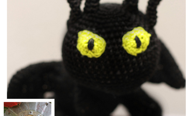Finn's Pick: Toothless from How to Train Your Dragon