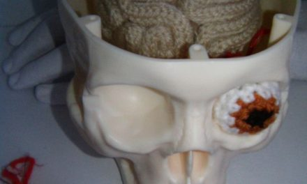 creative! crochet brain and eyeball, set inside a skull.