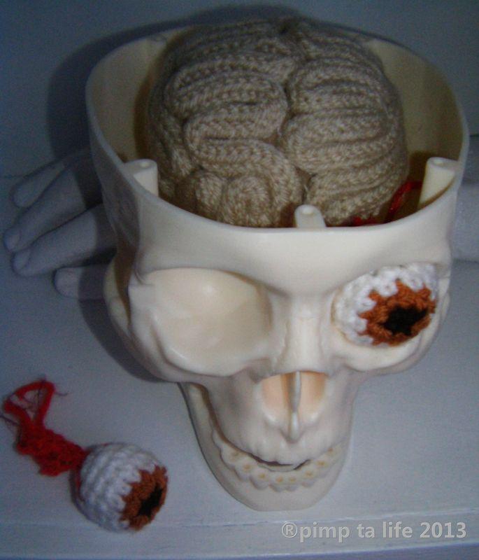 Crochet Brain & Eyeball, Set Inside Replica Skull - Creative!