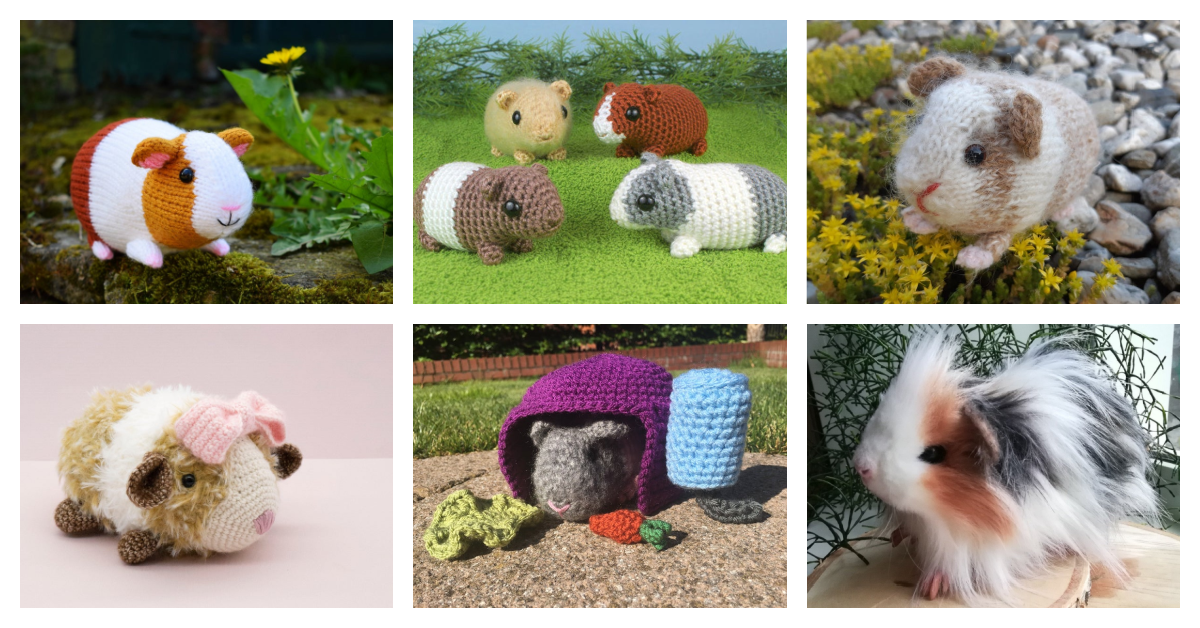 Knit & Crochet Guinea Piggy Patterns … Finn Says Everyone Should Live Their Life The GUINEA PIG WAY!