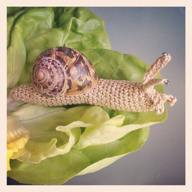 Crochet Snail Inside Real Shell By Amigurama