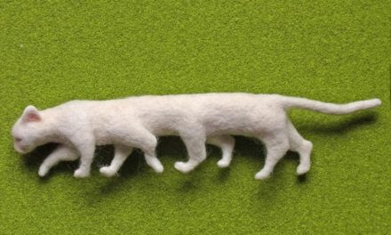 Nosonoso's Felted 4th Dimension Cat