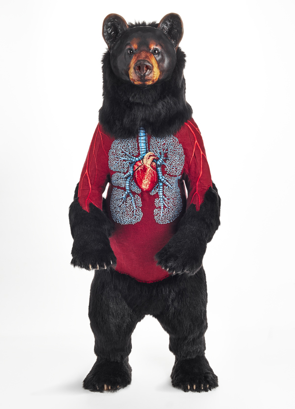 Deborah Simon's Incredible Embroidery: 'Flayed Bears'