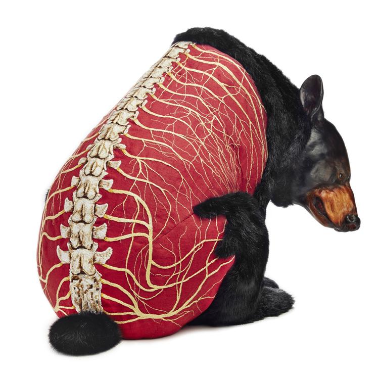 Deborah Simon's Incredible Embroidery: 'Flayed Bears'