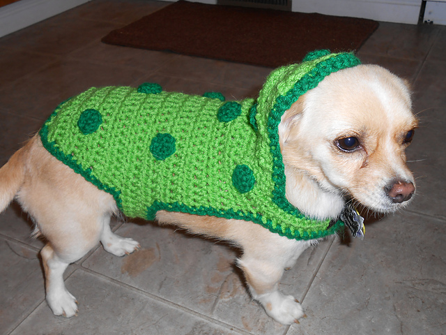 Pickle Costume pattern (crochet) for small dogs by Lightning Cat