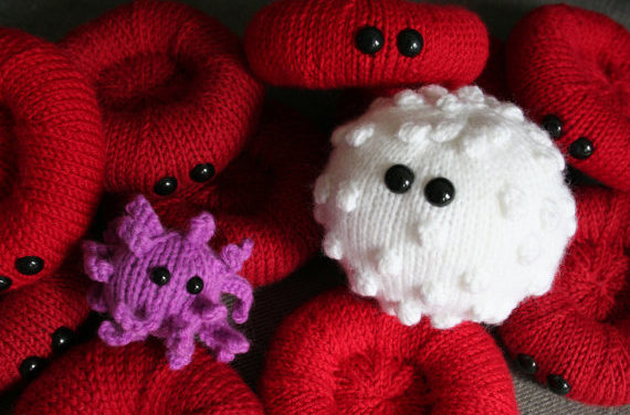Knit Red & White Blood Cells and an Activated Platelet – by Dawn Finney