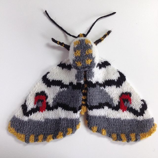 Moth is not a four-letter word for this UK knitter!