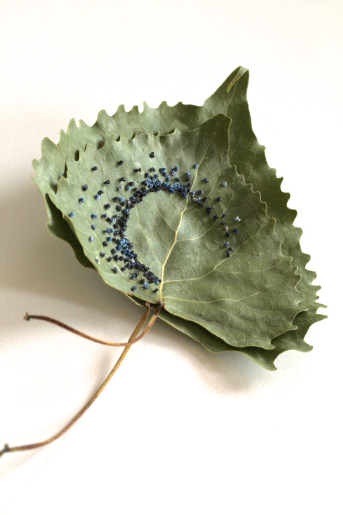 Hillary Fayle's Delicate Stitch Work on Leaves - You'll Wonder How She Does It!