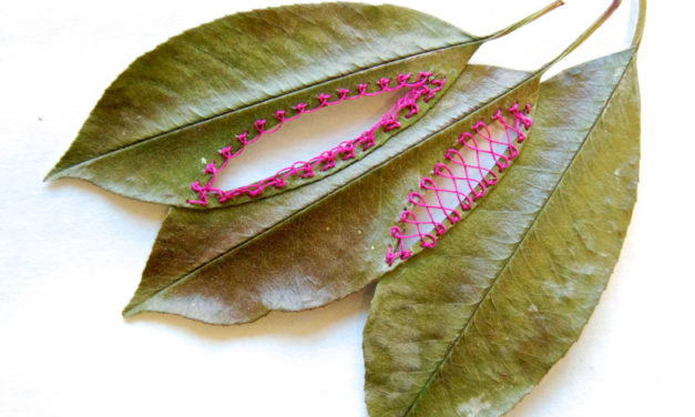 Hillary Fayle's Delicate Stitch Work on Leaves – You'll Wonder How She Does It!