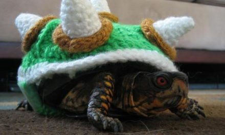 With This Baby Bowser, the Royal Koopa Line is Strong As Ever!