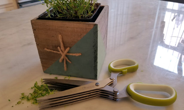 Need a Quick Gift? This Herb Set is the Perfect Combo of Store Bought and Handmade