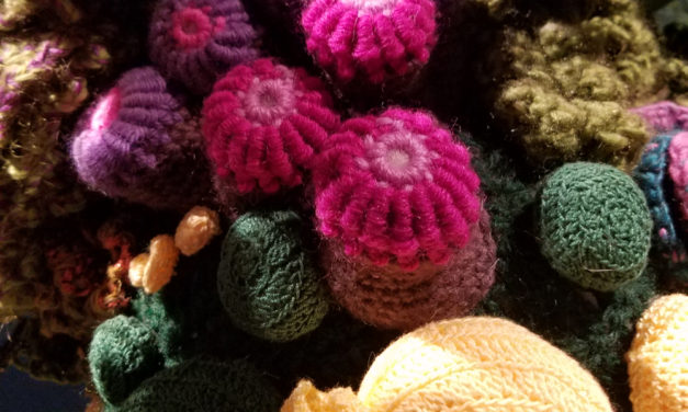 """Crochet Coral Reef: TOXIC SEAS"" at the Museum of Arts and Design (MAD) in New York City"