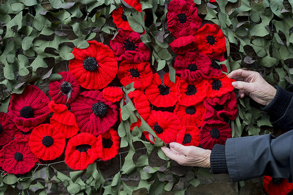 This is What 40,000 Poppies Knit with 450 Miles of Yarn Looks Like