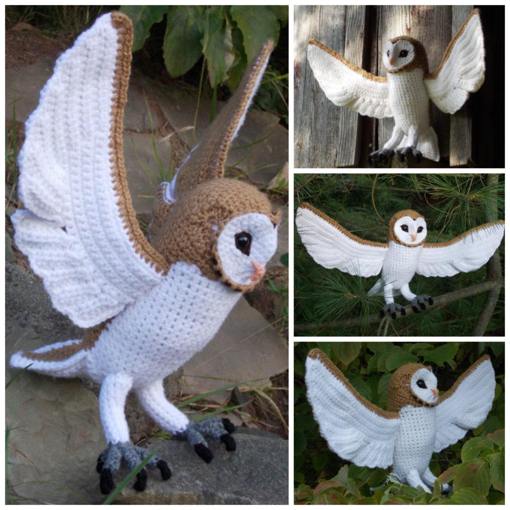Beautiful Barn Owl With 21