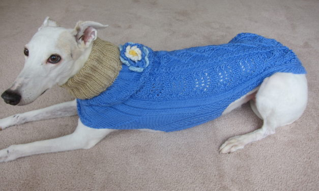 She Knits Sweaters for Greyhounds