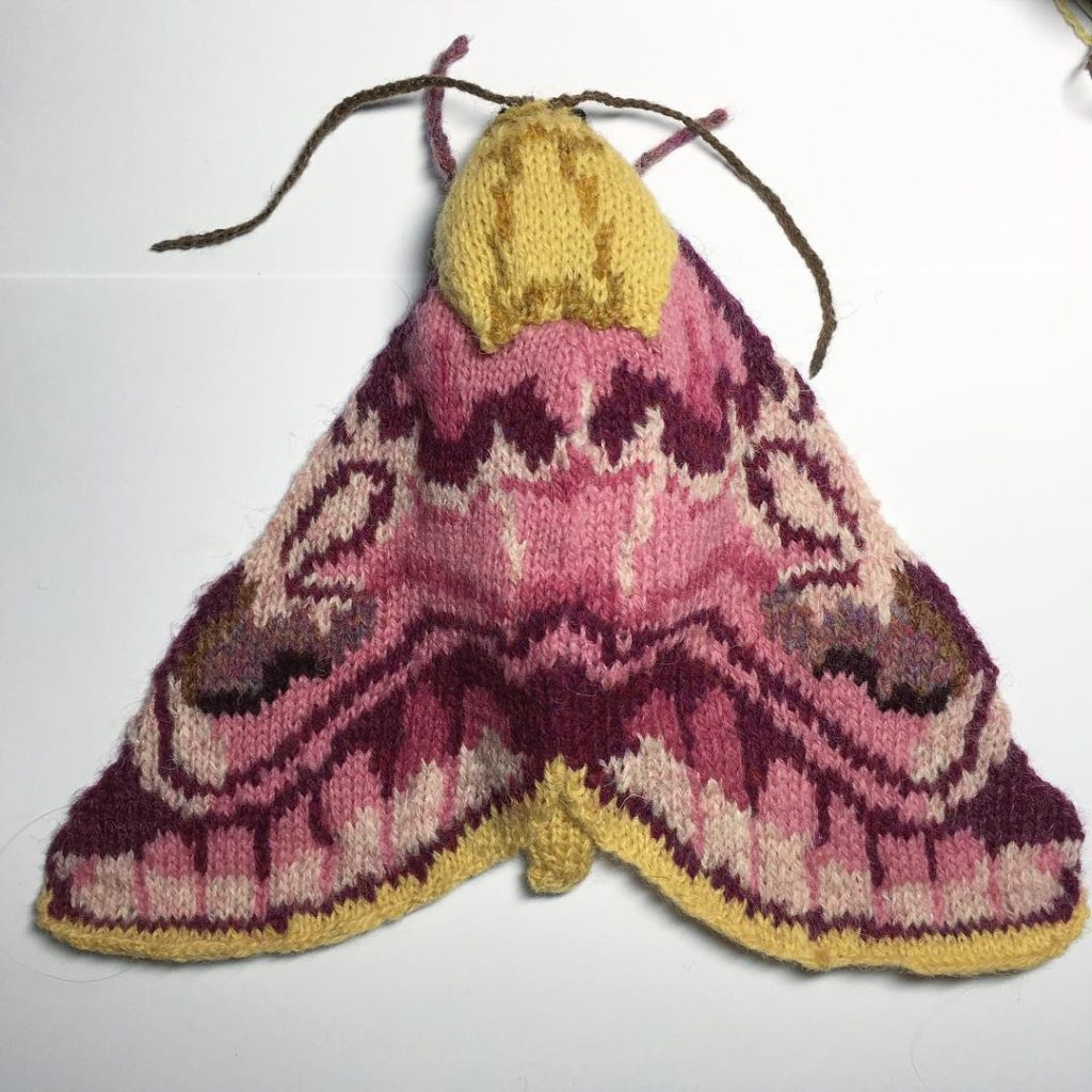 New Knitted Moths By Max Alexander