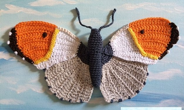 Spring is Coming, Crochet a Kaleidoscope of Butterflies!