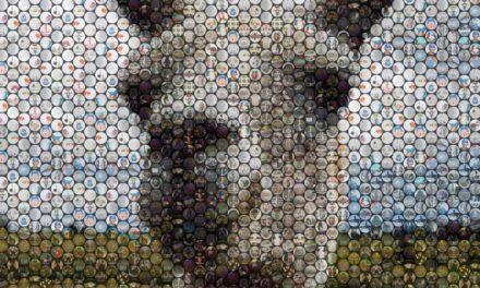 Review: Make Beautiful Mosaics Using TurboMosaic, They Make Great Gifts!
