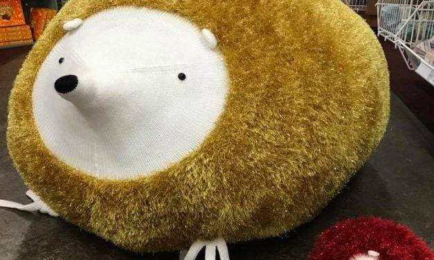Spike The Giant Hedgehog – He's a Traveler!