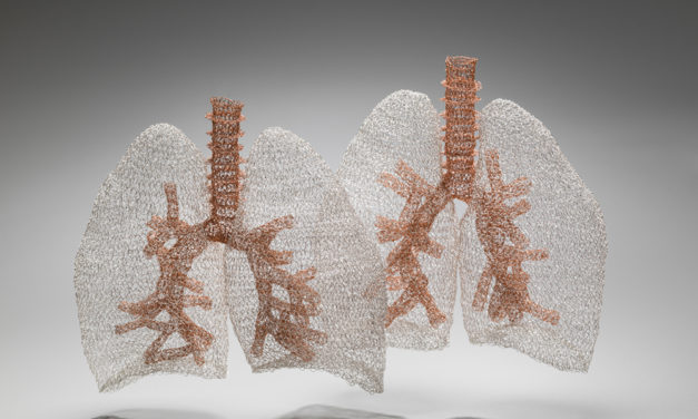 Anne Mondro Crocheted Anatomically Correct Lungs Using 26-Gauge Steel and Copper