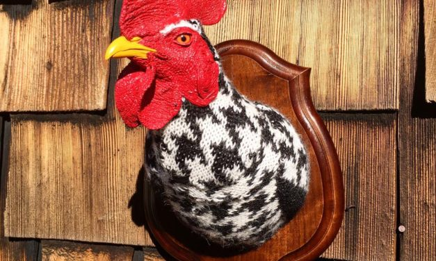 "Eva Devon's ""Sweaty"" Rooster Rules The Roost … Fauxidermy At It's Best!"