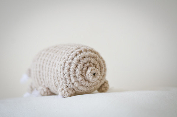 4 Tardigrade Patterns For The End of the World … This Eight-Legged Wee Beastie Will Outlive Us All