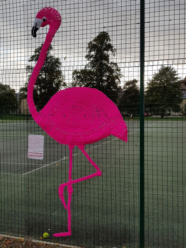Meet Fandango the Fuchsia Flamingo and Her Maker Tigerchilli, a Yarn Bomber Based in Cambridge, UK
