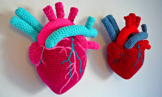 Crochet & Needle Felted Anatomical Hearts By Laura Cameron aka Lost in the Wood
