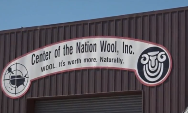 Go Inside the Wool Warehouse That Handles 20% of America's Wool – Their Main Customer Is Surprising!