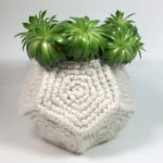 Crochet a Few Pretty Pentagons To Make This Spectacular Succulent Holder – Great Office Gift!