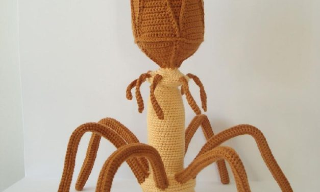 You Can Crochet This Bacteriophage Virus – Unique Gift Factor Very High!