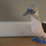She Crocheted a Blue-Footed Booby!