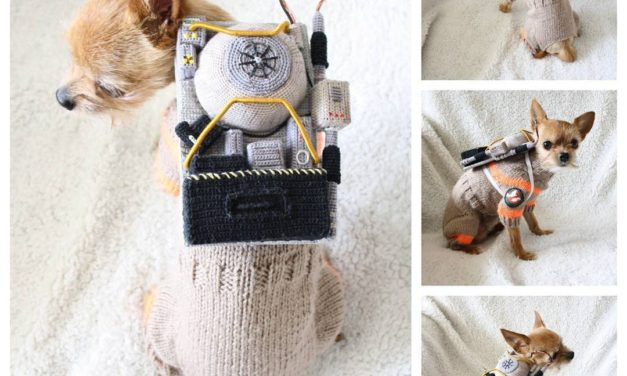 Check Out Pyret the Chorkie in His Knit & Crochet Doggy Ghostbusters Cosplay
