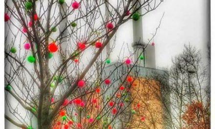 German Yarn Bomber Mansha Friedrich's 1000 Pom-Pom Installation – Springtime in January!
